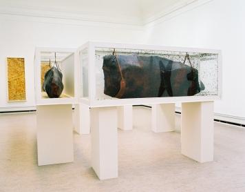 Kokonger Med Flugor - Konstakademin, 2000