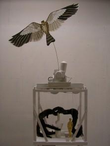 Fågel Med Minkar